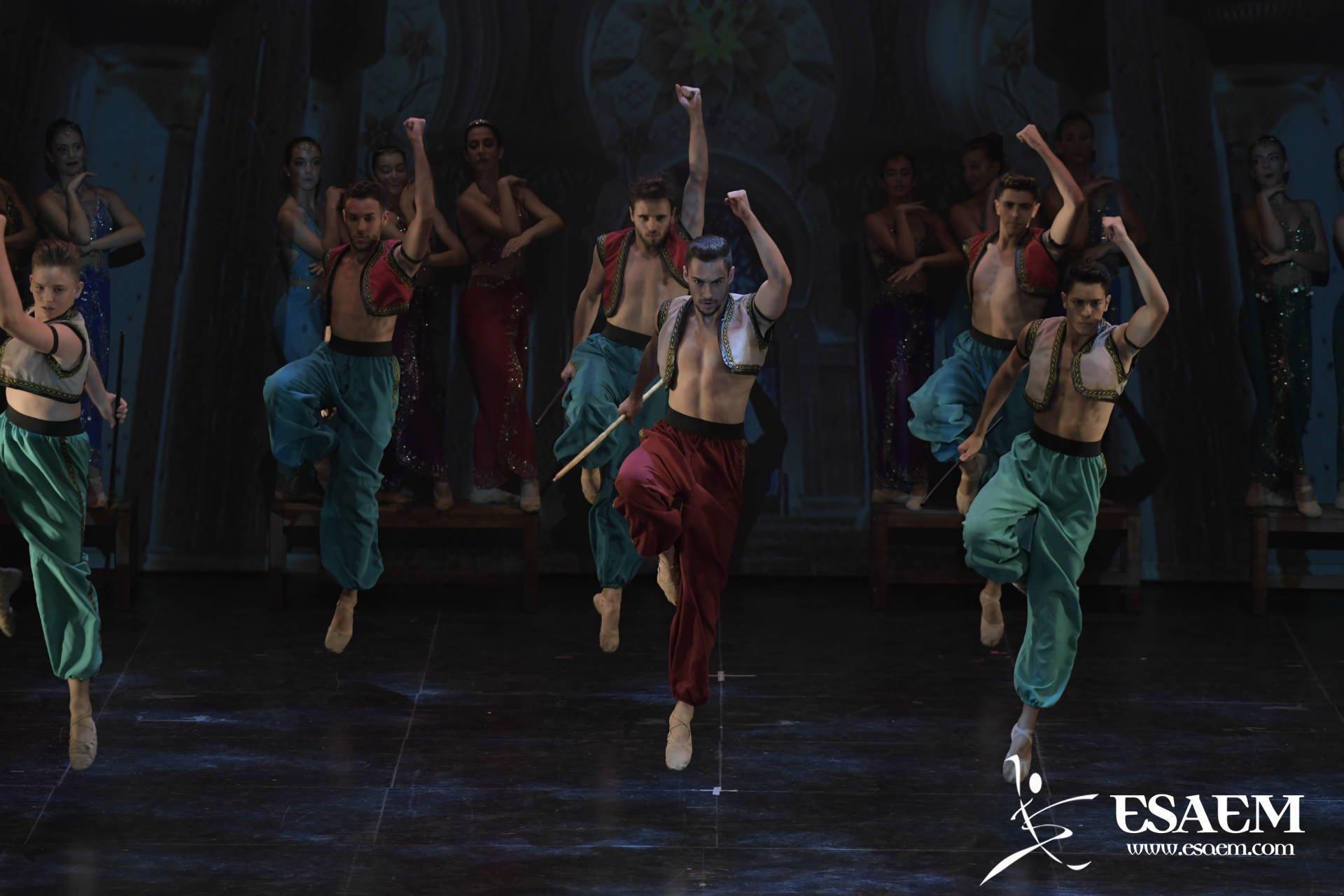 ConservatorioProfesional de Danza Málaga